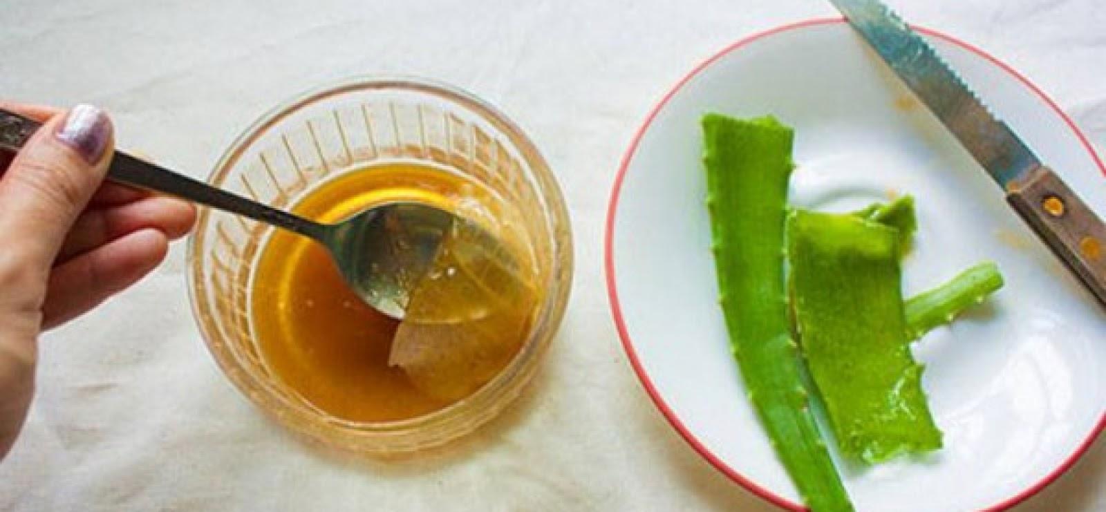 Настойки из алоэ с медом