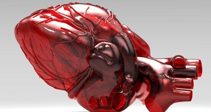 Гипертрофия сердца: патологии левого и правого желудочка