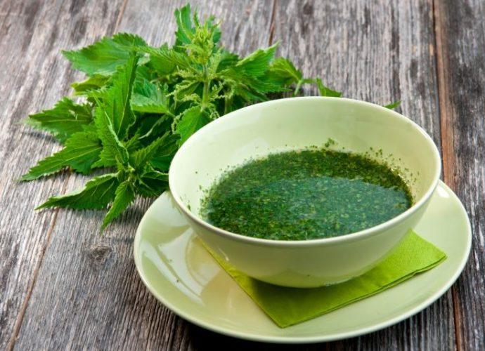 Рецепты настоек и чаев из крапивы для похудения