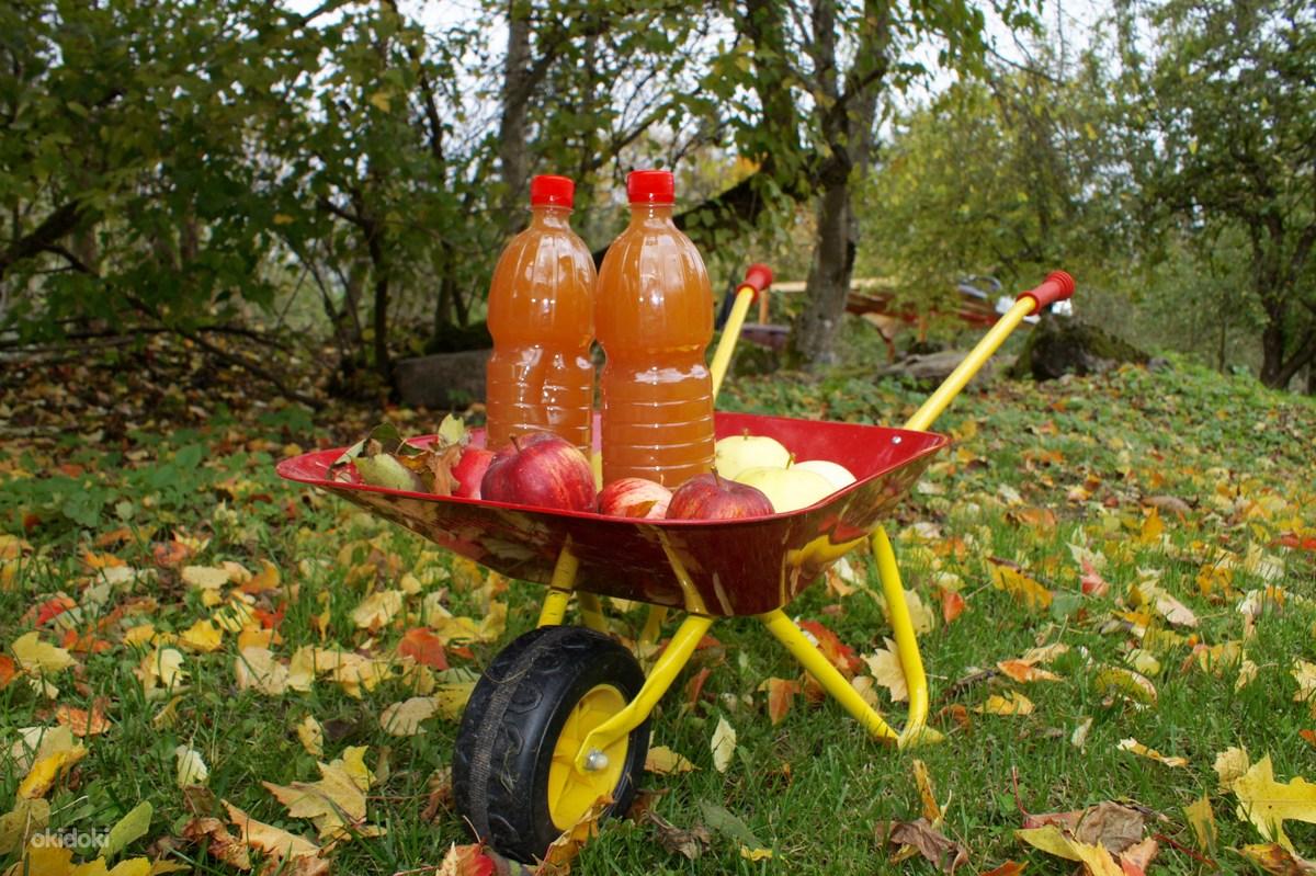 Яблочный сок на зиму: как приготовить с соковаркой и без нее